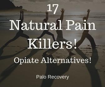 17 Natural Pain Killers