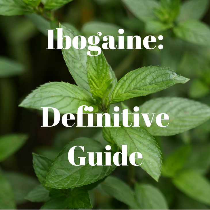 Ibogaine: The Definitive Guide on How This Native African Plant Is Treating Addiction!